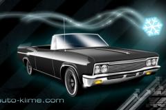 auto-klime-1